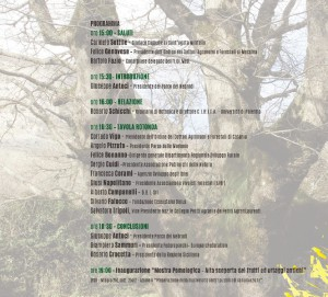 Parco_seminario_alberi_monumentali 2