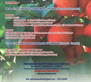 caronia - seminario x