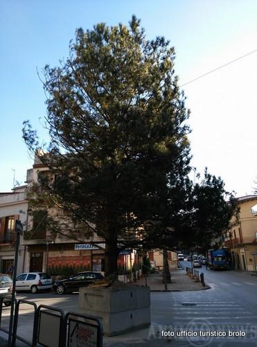 1-un pallina per l'albero di natale brolo 2015 (18)